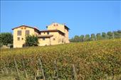 luxury apartments with vineyards in chianti